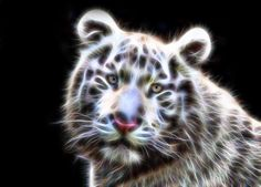 Fractal Wire Flame White Tiger