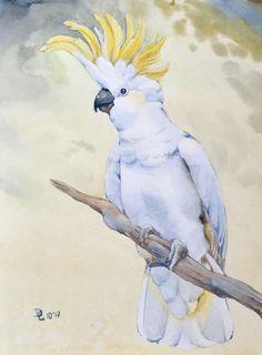 Tropical Art, Tropical Birds, Watercolor Animals, Watercolor Art, Bird Illustration, Watercolor Illustration, Australian Parrots, Parrot Painting, Folk Art Flowers