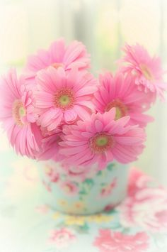 pretty in pink - Maria Starzyk Pastel Flowers, Flowers Nature, My Flower, Pretty In Pink, Beautiful Flowers, Margarita Rosada, Flower Phone Wallpaper, Fotos Do Instagram, Pink Daisy