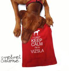 Olive NEEDS this. Keep Calm Vizsla Doggie TShirt by VelvetandStoneShop on Etsy, $28.99