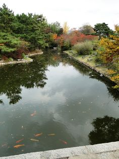 Anapji Pond  雁鴨池  - 據韓國最古老的史書《三國史記》(AD1145創作)記載,新羅(BC57-AD935)文武王(AD661-681在位)14年(AD647)命令在宮城裏挖一蓮花池,做成一座小山,種上花草,還餵養珍奇動物。雁鴨池即是當時挖出的蓮花池。
