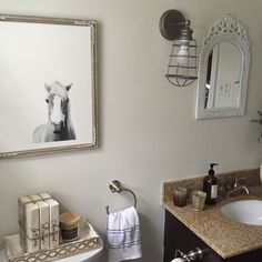 A quick and easy bathroom makeover that only took us about 8 hours total!