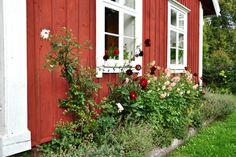 Trädgård - Luveryd | Hemnet Inspiration