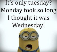 """Free Funny Minion captions 2015 (09:01:52 PM, Tuesday 04, August 2015 PDT) – 10 pics  <a class=""""pintag searchlink"""" data-query=""""%23Etsy"""" data-type=""""hashtag"""" mce_thref=""""/search/?q=%23Etsy&rs=hashtag"""" rel=""""nofollow"""" title=""""#Etsy search Pinterest"""">#Etsy</a> <a class=""""pintag searchlink"""" data-query=""""%23Danahm1975"""" data-type=""""hashtag"""" mce_thref=""""/search/?q=%23Danahm1975&rs=hashtag"""" rel=""""nofollow"""" title=""""#Danahm1975 search Pinterest"""">#Danahm1975</a> <a class=""""pintag"""" mce_thref=""""/explore/Jewelry/"""" title=""""#Jewelry explore Pinterest"""">#Jewelry</a>"""