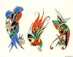 Dessin Tatouage Oiseaux Paradis Fc7g9