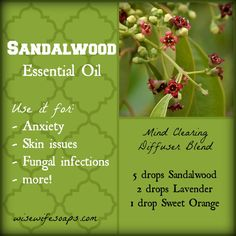 I love using Sandalwood essential oil. It's calming, sensual, and stays with you throughout the day. Every time I work with it, the oil seems to linger on my skin for hours.   Wh…