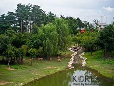 Seoul Forest (서울숲)  685, Seongsu 1(il)-ga 1(il)-dong, Seongdong-gu, Seoul, South Korea 서울 성동구 성수1가1동 685번지 일대