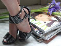 Vogue and Heels