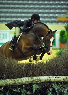 What Life Means as an Equestrian
