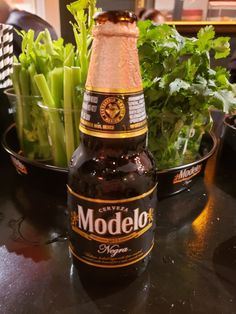 Modelo Negra, the classic Mexican dark lager. I'm drinking it here at the Gold Lion Barbershop, a pop up that is currently in Houston, Texas Mexican Beer, Barbershop, Beer Bottle, Houston, Drinking, Lion, Texas, Dark, Classic