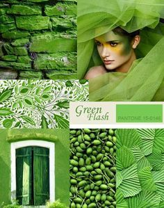 Let these Pantone greenery tones inspire your next design project Pantone 2016, Pantone Color, Mood Colors, Green Colors, Paint Colours 2017, Pantone Greenery, Color Of The Year 2017, Color Collage, Color Stories