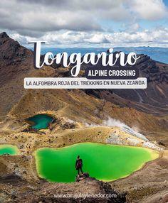 Cómo hacer el Tongariro Alpine Crossing en Nueva Zelanda New Zealand, Red Carpet, National Parks, Beautiful Landscapes, How To Make, Islands