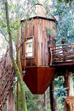 Tree Capsule - 20 Treehouses From Insta We're Obsessed With - Photos