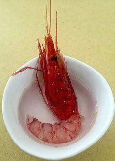 Gambero rosso di #portosantospirito in acqua di mare