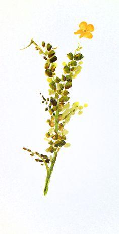 Retama. 2013. Sumi-e, tintas sobre seda  en soporte rígido de 27 x 14 cm Alesso, Plants, Antique China, Silk, Ink, Art, Plant, Planets