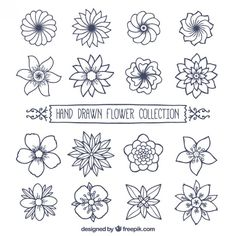 504 Best Drawing Flowers Images In 2019 Flower Designs