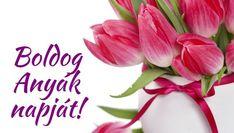Happy Birthday, Spring, Flowers, Google, Board, Fit, Happy Brithday, Shape, Urari La Multi Ani