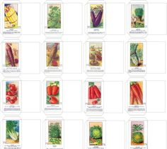 Sachets de graines de légumes anciens (1938) Vegetables seeds packets 1938