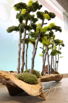 greenfingers tree design