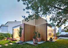 This timber-clad painting studio frames the trunk of an ash tree in the garden of an artist's house in Catalonia.