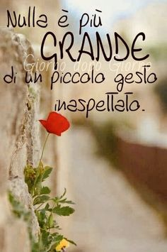 General Quotes, Italian Life, Italian Quotes, Special Quotes, Positive Mind, What A Wonderful World, Beautiful Words, Love Of My Life, Decir No