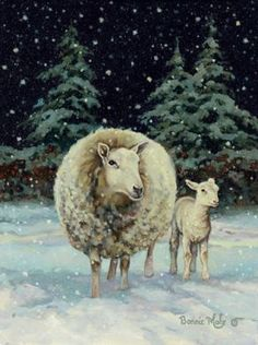 ♥~ Sheep in Snow ~♥                                                                       #sheep. #snow