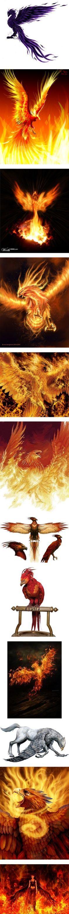 ... tattoos on Pinterest | Phoenix Phoenix feather and Watercolor phoenix