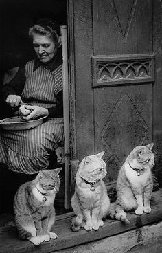 Love this homely photo by German photographer Toni Schneiders (1920 – 2006), who was one of the most important figures of photography in post-war Europe.