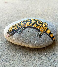 Gila Monster Rock Painting, Gila Monster Painting, Lizard Art, Hand Painted…
