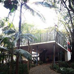 Casa de Vidro - Instituto Lina Bo e P.M. Bardi | 30 lugares deslumbrantes em São Paulo que vão fazer você se sentir um turista