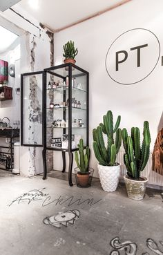 PHOTOGRAPHY | PT POST STORE, BERGEN, THE NETHERLANDS