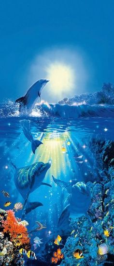We offer for sale a large selection of Dolphin's in the Sun wall murals, wall murals and photo murals in all sizes. Plus tips on wall mural installation. Ocean Wallpaper, Animal Wallpaper, Nature Wallpaper, Wallpaper Murals, Wallpaper Backgrounds, Underwater Painting, Underwater World, Brewster Wallpaper, Dolphin Art