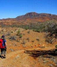 Escursionista nella natura australiana, Gawler Ranges, Victoria | Australia