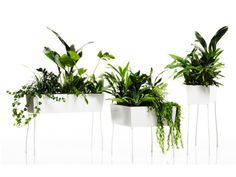 Vase GREEN PEDESTALS O₂ASIS Collection by Offecct   design FRONT