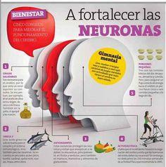 ¡Mucho ojo! Fortalecer las neuronas también es muy importante.