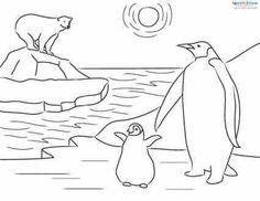 penguin colouring page  Google Search  PENGUINS  Pinterest