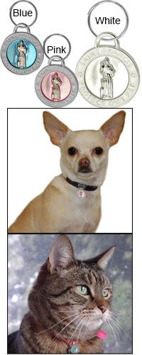 Dog Id Tags Animal Rescue Site