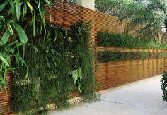 É possível, sim, ter plantas dentro de casa. O espaço entre as janelas da sala do paisagista Gil Fialho ganhou um sistema de drenagem e irrigação para manter o jardim vertical