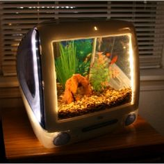 iMacquarium Fish Tank Built with iMac - FINALLY! an answer to the question: what to do with all those iMac too bad I have a phobia that prevents me from ever getting an aquarium. Imac G3, Unique Fish Tanks, Cool Fish Tanks, Old Mac Computers, Tanked Aquariums, Fish Aquariums, Ideias Diy, Animal Projects, Old Tv