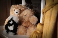 Wonderful Teddy Bear #Thealpacacollection #alpaca #quality #luxury #knitwear