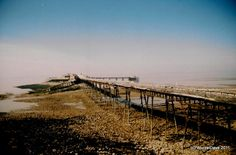 Birnbeck  Low Tide
