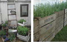Un quadrato di giardino :: Discussione: Bordure fai da te o da riciclo! (1/5)