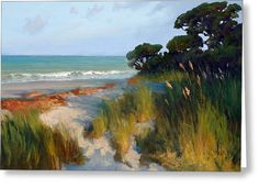 Pines And Sea Oats Greeting Card by Armand Cabrera
