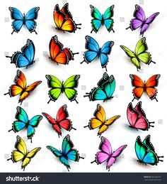 Collection of colorful butterflies, flying in different directions. Vector. #Sponsored , #SPONSORED, #butterflies#colorful#Collection#Vector