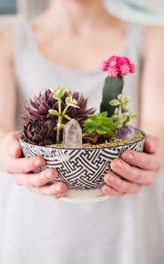 terrario en bol inspiración plantas variadas y cuarzo transparente