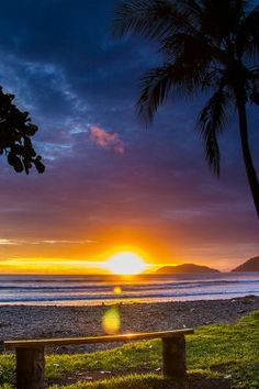 """invocado:  Bench With A View, Jaco, Costa Rica ~ from """"Peter"""""""