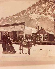 Donkey Sledding ~ Lake City Colorado ~ 1880