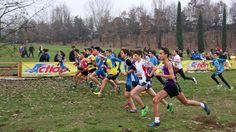 Marsigliani Tiziano Sports, Hs Sports, Sport