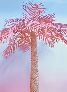 Resultado de imagen para diy pink palm tree in museum of ice cream World Tapestry, Tree Tapestry, Pretty Pastel, Pastel Pink, Ice Cream Museum, Twitter Header Aesthetic, Mood Wallpaper, Pink Beach, Colors