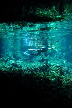 Akumal, Mexico - turtle reserve